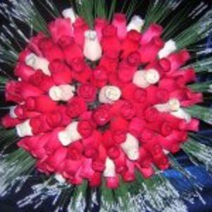Roses Bois